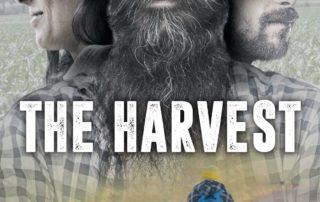 The Harvest - Devanagari - Centro Yoga Aosta